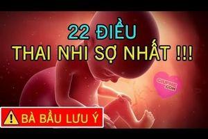 22 điều thai nhi sợ nhất mẹ bầu cần biết khi mang thai