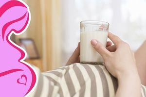 Sữa dành cho bà bầu 3 tháng đầu