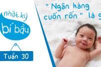 Thai 30 tuần