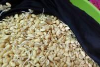 Cách làm bột mầm đậu nành tại nhà