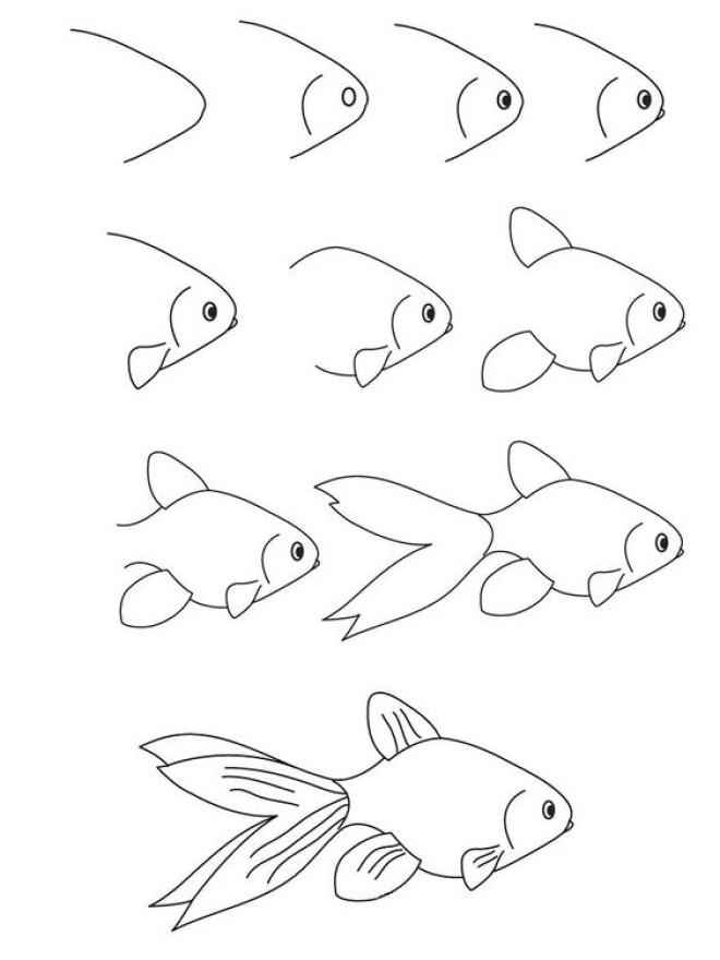 Cách vẽ hình con cá 2