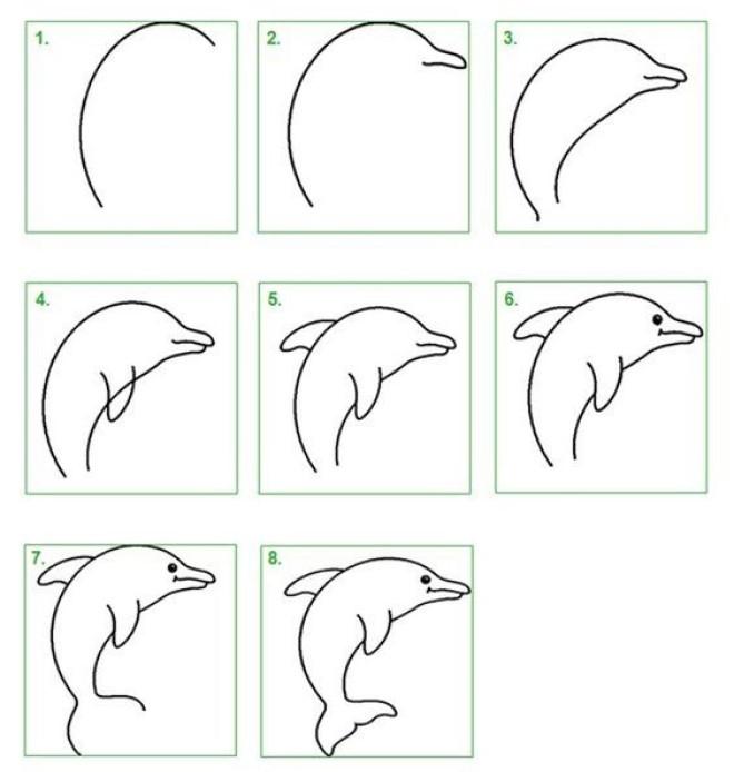 Cách vẽ hình cá heo