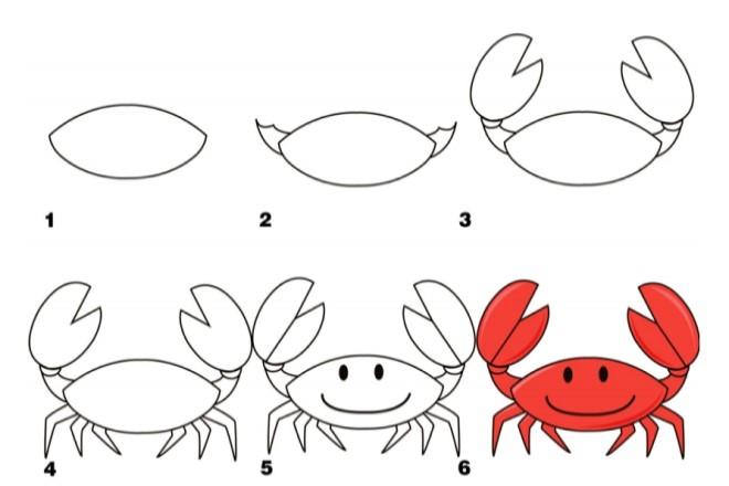 Cách vẽ hình con cua 2