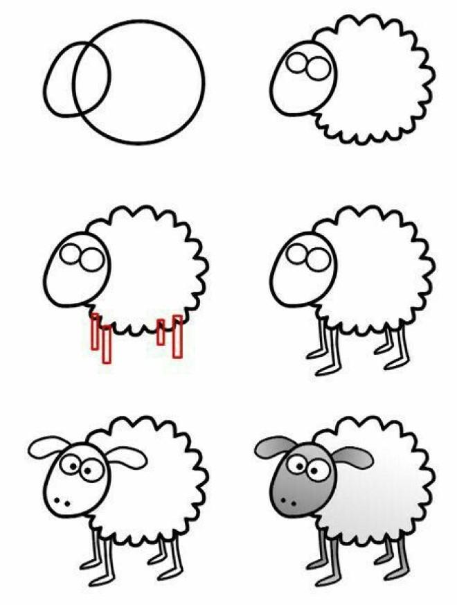 Cách vẽ hình chú cừu 1