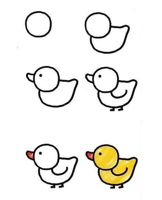 Cách vẽ hình chú gà con
