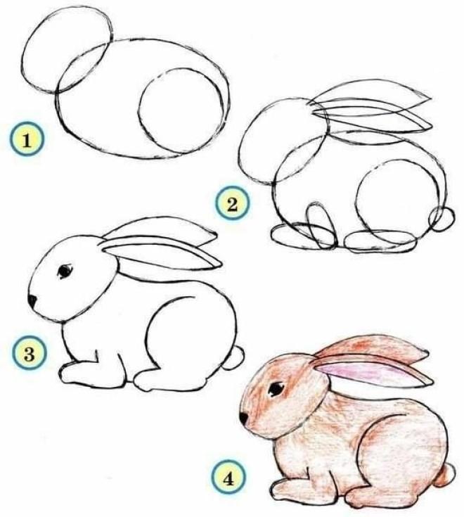 Cách vẽ hình chú thỏ