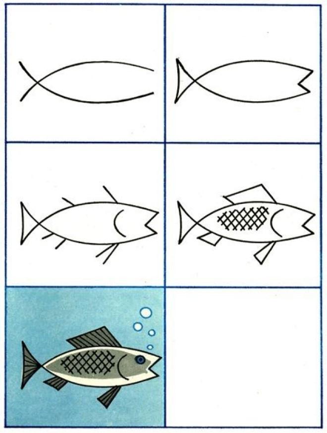 Cách vẽ hình con cá 3