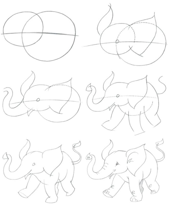 Các bước vẽ chú voi